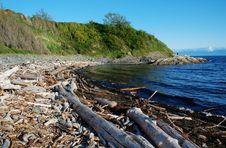 Free Seashore Stock Photography - 5487752