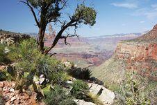 Free Scenery From Grand Canyon In Arizona Royalty Free Stock Photo - 5487775
