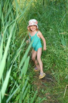 Free Playing In Grass Royalty Free Stock Photography - 5488987