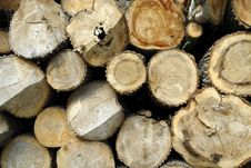 Free Pile Of Wood Royalty Free Stock Images - 5489179