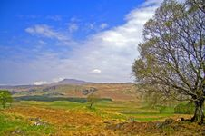 Free Scottish Hills In Early Spring Royalty Free Stock Photography - 5489687