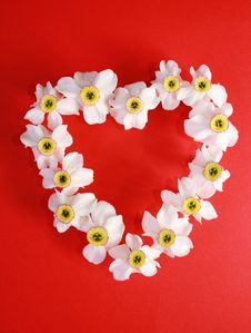 Free Romantic Heart From Narcissus Stock Photos - 5489913