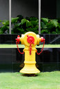 Free Fire Hydrant Stock Photo - 5496860