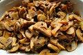 Free Stewed Mushrooms Stock Photography - 5499482