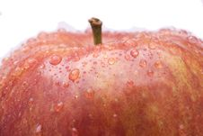 Free Red Apple Stock Photo - 5490720