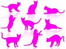 Free Cats Silhouette Royalty Free Stock Photography - 5490837