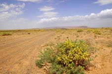Panorama Of The Steppes, Central Mongolia Royalty Free Stock Images
