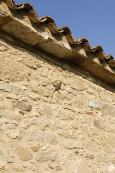 Free Tile Roof Royalty Free Stock Image - 5491556