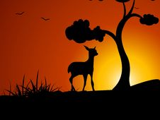 Free Deer Near Tree Royalty Free Stock Images - 5492749
