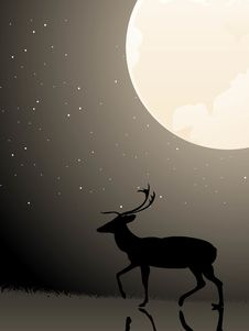 Free Reindeer Under Full Moon Stock Photography - 5492802