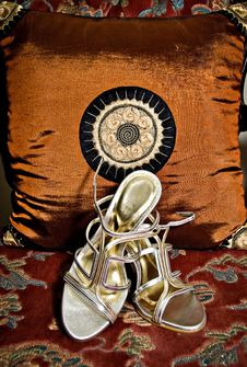 Free Wedding Shoes Stock Photography - 5494152