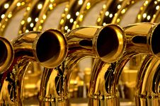 Free Golden Horns Stock Images - 5495144