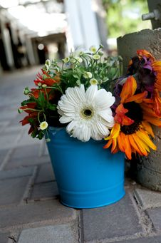 Free Floral Arrangement In A Blue Tin Royalty Free Stock Images - 5498079