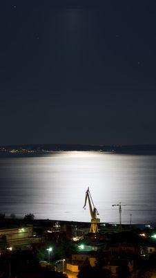 Free Moonlight Crane Royalty Free Stock Image - 5498546
