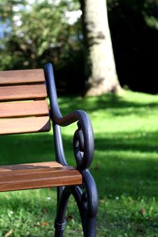 Free Bench And Grass Royalty Free Stock Photos - 5499108