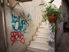 Downtown Poor Backyard