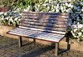 Free Chair Stock Photos - 557053