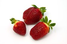 Free Strawberries Royalty Free Stock Photos - 550878