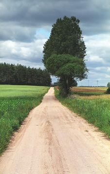 Free Road To Somewhere Royalty Free Stock Photography - 551527
