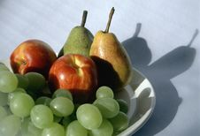 Free Shadow Of Fruits Stock Photos - 553503