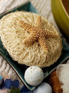 Free Starfish Royalty Free Stock Photo - 553605