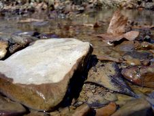 Free Rocks In A Creek Royalty Free Stock Photo - 555575