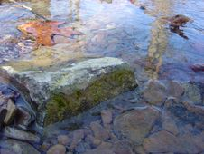 Free Rock In A Creek Stock Images - 555584