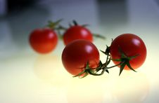 Free Tomatoes Royalty Free Stock Photography - 555817