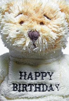Free Teddy Bear Stock Photography - 556212