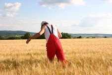 Free Farmer In The Field Stock Photos - 556723
