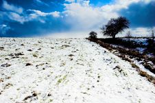 Free Winter Stock Photos - 557163