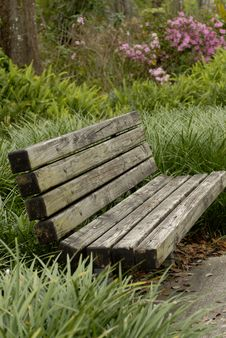 Free Park Bench In Tall Grass Royalty Free Stock Images - 557919
