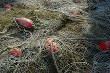 Free Fishing Nets Stock Photo - 558080