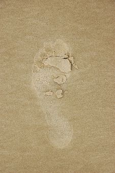 Free Barefoot Print Stock Images - 559354
