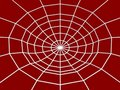 Free Spider Web Royalty Free Stock Images - 5500779