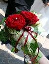 Free Wedding Ring Cushion Royalty Free Stock Images - 5501259