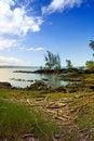 Free Big Island, Hawaii Stock Image - 5504971