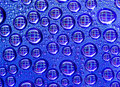Free Abstract Water Drops Royalty Free Stock Photography - 5508247