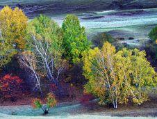 Free Autumn Colour Stock Photo - 5500130