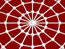 Free Spider Web And Joint Royalty Free Stock Photos - 5500768