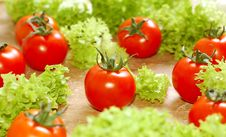 Free Fresh Salad With Tomatoes Royalty Free Stock Images - 5500899