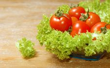 Free Fresh Salad With Tomatoes Stock Photography - 5500902