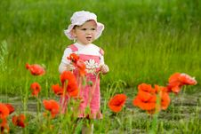 Free Baby-girl With Red Flower Royalty Free Stock Photography - 5501087