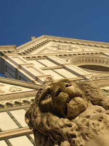 Free S.Croce Church And A Lion Stock Photography - 5501542