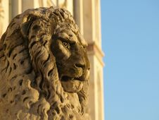 Lion In S.Croce Square Stock Photo