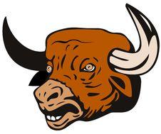 Free Bull Head Royalty Free Stock Photo - 5501645