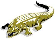 Free Crocodile Royalty Free Stock Photo - 5501685