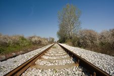 Free Railroad Tracks Stock Photos - 5501783