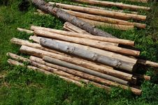 Free Timber Royalty Free Stock Photography - 5502437