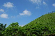 Free Heaven In Roccamonfina Stock Images - 5503244